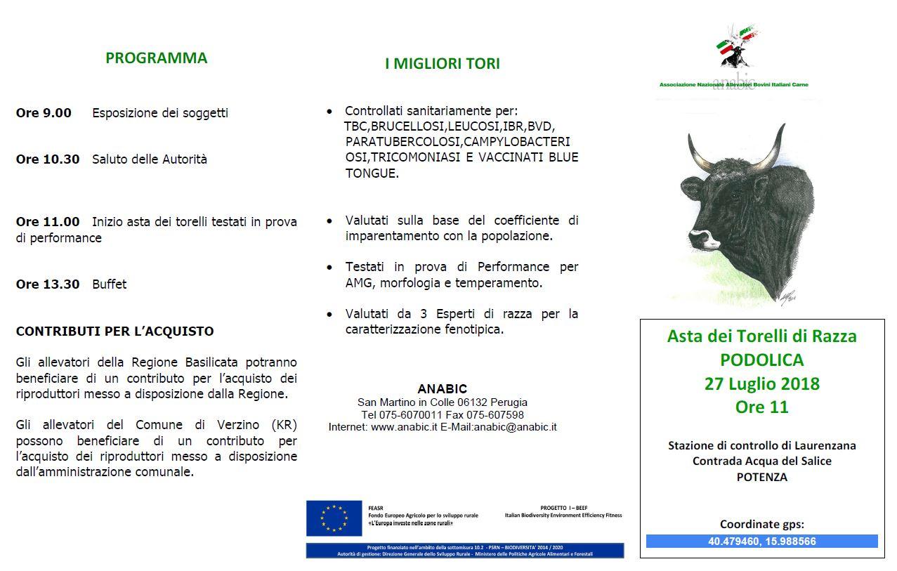 Asta dei Torelli di razza Podolica approvati in Prova di Performance e XIV° Meeting Allevatori